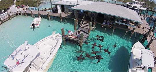 Bahamas Yacht Party | Yacht Life Bahamas | Luxury Yachts